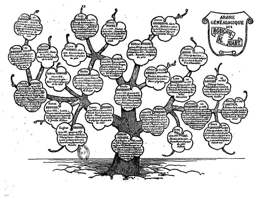 Arbre généalogique des Rougon Macquart de Zola